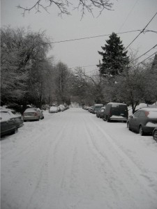 snowyneighborhood